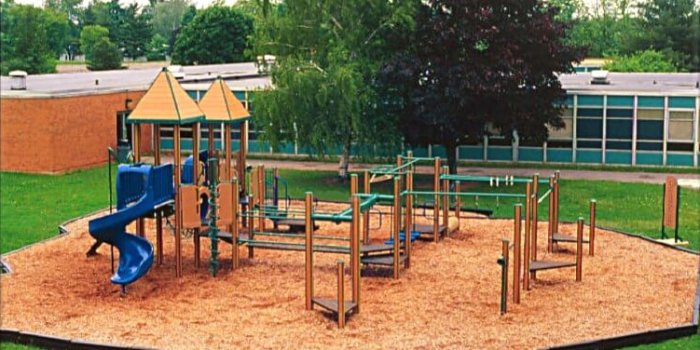 Photo of a playground with decks, ziplines, and slides.