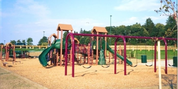 Photo of playground with slides, climbers, and swings.