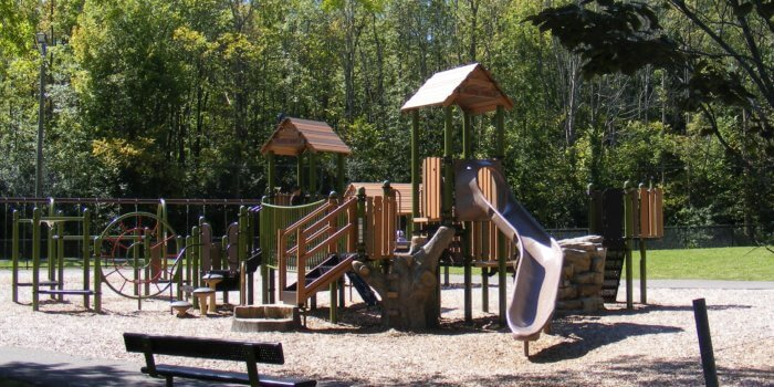 Photo of a nature-inspired playground, with slides, decks, and climbers, surrounded by trees.